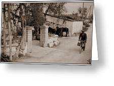 Man On A Bicycle Greeting Card