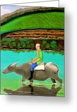 Man Riding A Carabao Greeting Card