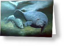 Manatee Madonna Greeting Card