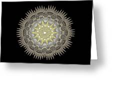 Mandala 1 Greeting Card