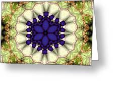 Mandala 114 Greeting Card
