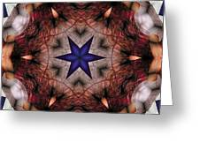 Mandala 14 Greeting Card by Terry Reynoldson