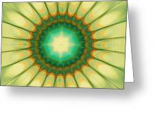 Mandala Of The Hope Greeting Card