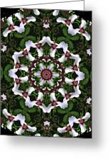 Mandala Trillium Holiday Greeting Card
