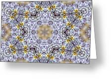 Mandala79 Greeting Card