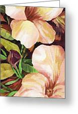 Mandevilla Greeting Card by Natasha Denger