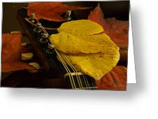 Mandolin Autumn 6 Greeting Card
