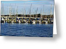 Mandarin Park Boats On Julington Creek Greeting Card