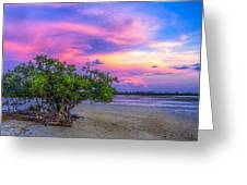 Mangrove By The Bay Greeting Card by Marvin Spates
