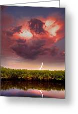 Mangrove Storm Greeting Card