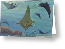 Manta Ray Greeting Card by ACE Coinage painting by Michael Rothman