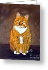 Manx Cat Greeting Card