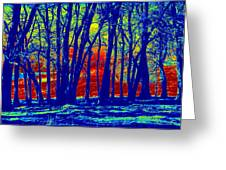Many Trees II Greeting Card