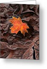 Maple Greeting Card
