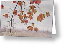 Maple In Gray Sky Greeting Card