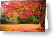 Maple In Red And Orange Greeting Card