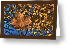 Maple Leaf Still Standing Greeting Card