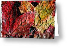 Maple Leaves Cracked Square Greeting Card