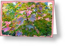 Maple Magnetism Painting Greeting Card