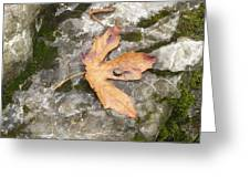 Maple Rock Greeting Card
