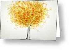 Maple Tree 1 Greeting Card