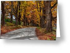 Maple Tree Road Greeting Card