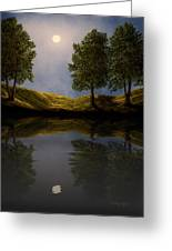 Maples In Moonlight Reflections Greeting Card
