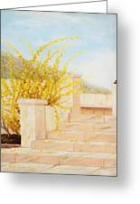 Marble Steps Greeting Card