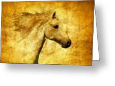 Marbled War Horse Greeting Card