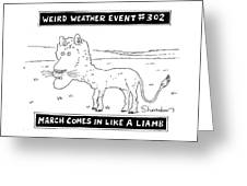 March Comes In Like A Liamb Greeting Card