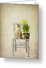 March Greeting Card by Elena Nosyreva