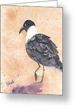 March Of The Laughing Gull Greeting Card