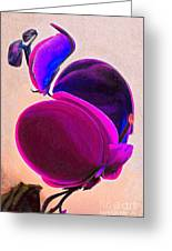 March Of The Orchid 4 Greeting Card