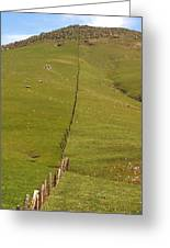 Marching Fence Greeting Card