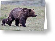 Marching Mama Grizzly And Cub  Greeting Card