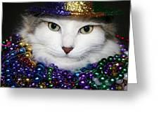 Mardi Gras Kitty Greeting Card
