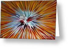 Mardi Gras Star Clown Greeting Card