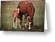 Mare With Foal Greeting Card