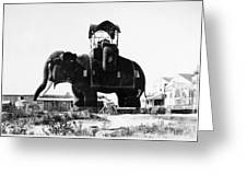 Margate Elephant, C1900 Greeting Card