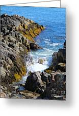 Marginal Way Crevice Greeting Card