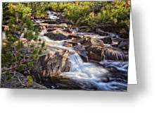 Marie Lakes Stream Greeting Card