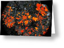 Marigold Fire Greeting Card
