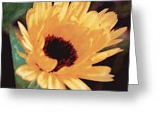 Marigold Impressions Greeting Card