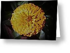 Marigold Digitized Greeting Card
