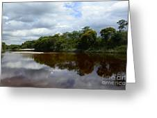 Marimbus River Brazil Reflections 4 Greeting Card