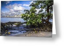Marina At The Inlet Greeting Card