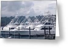 Marina Costa Rica Greeting Card