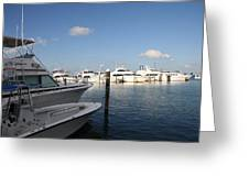 Marina Key West - Harbored Fun Greeting Card