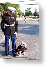 Marine And Bulldog Greeting Card