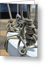 Mariners Knots Greeting Card
